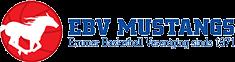 EBV Mustangs