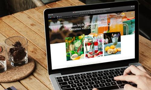 WordPress webshop